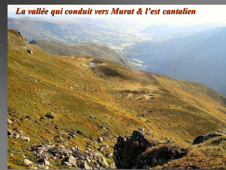 La vallée qui conduit vers Murat & lest cantalien
