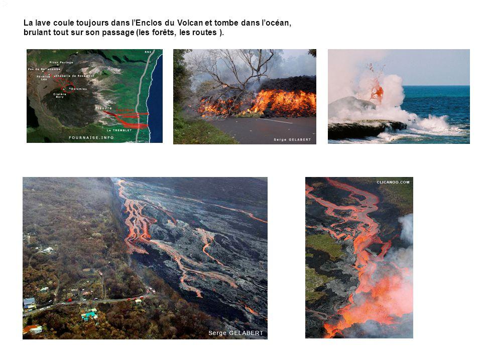 La lave coule toujours dans lEnclos du Volcan et tombe dans locéan, brulant tout sur son passage (les forêts, les routes ).