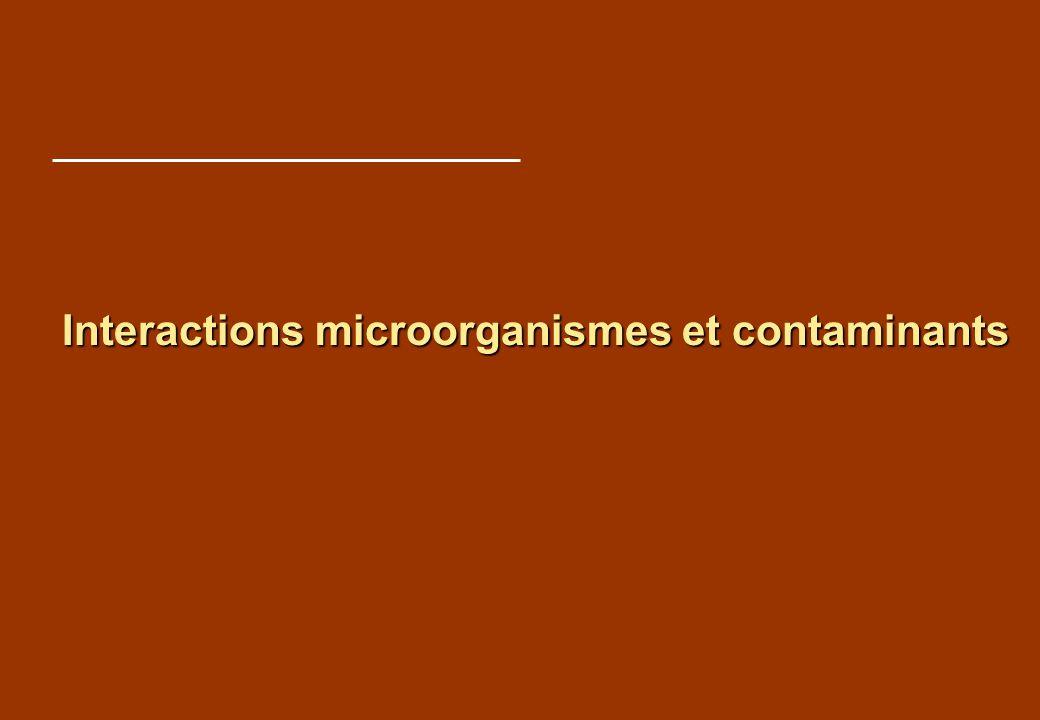 Structure et actions Axe 1 : Diversité de la contamination chimique Axe 1 : Diversité de la contamination chimique Axe 2 : Diversité des microorganismes Axe 2 : Diversité des microorganismes Axe 3 : Transformations biotiques et abiotiques Axe 3 : Transformations biotiques et abiotiques Axe 4 : Ecotoxicité de la contamination Axe 4 : Ecotoxicité de la contamination