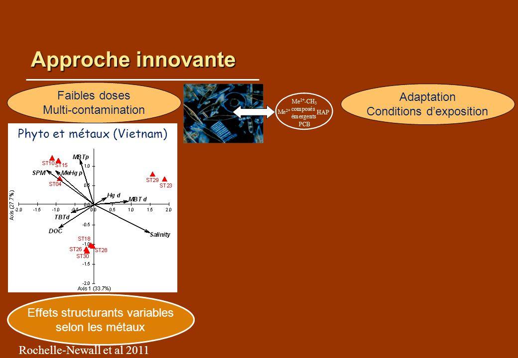 Approche innovante Effets structurants variables selon les métaux Rochelle-Newall et al 2011 Faibles doses Multi-contamination Adaptation Conditions d