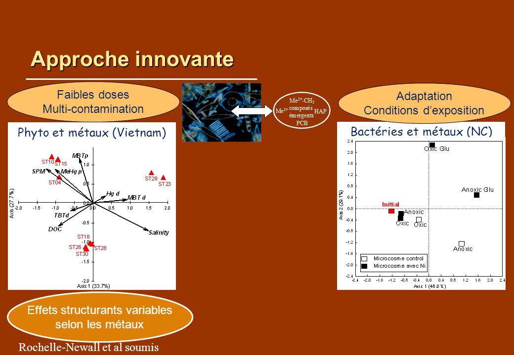 Approche innovante Effets structurants variables selon les métaux Rochelle-Newall et al soumis Faibles doses Multi-contamination Bactéries et métaux (