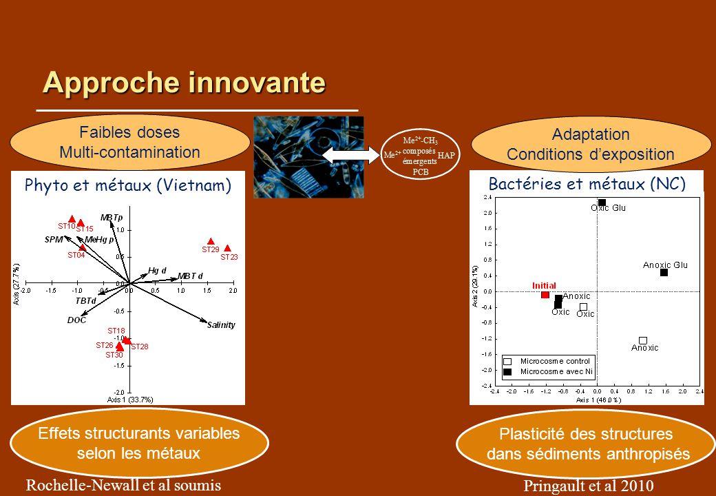 Approche innovante Effets structurants variables selon les métaux Plasticité des structures dans sédiments anthropisés Pringault et al 2010 Rochelle-N