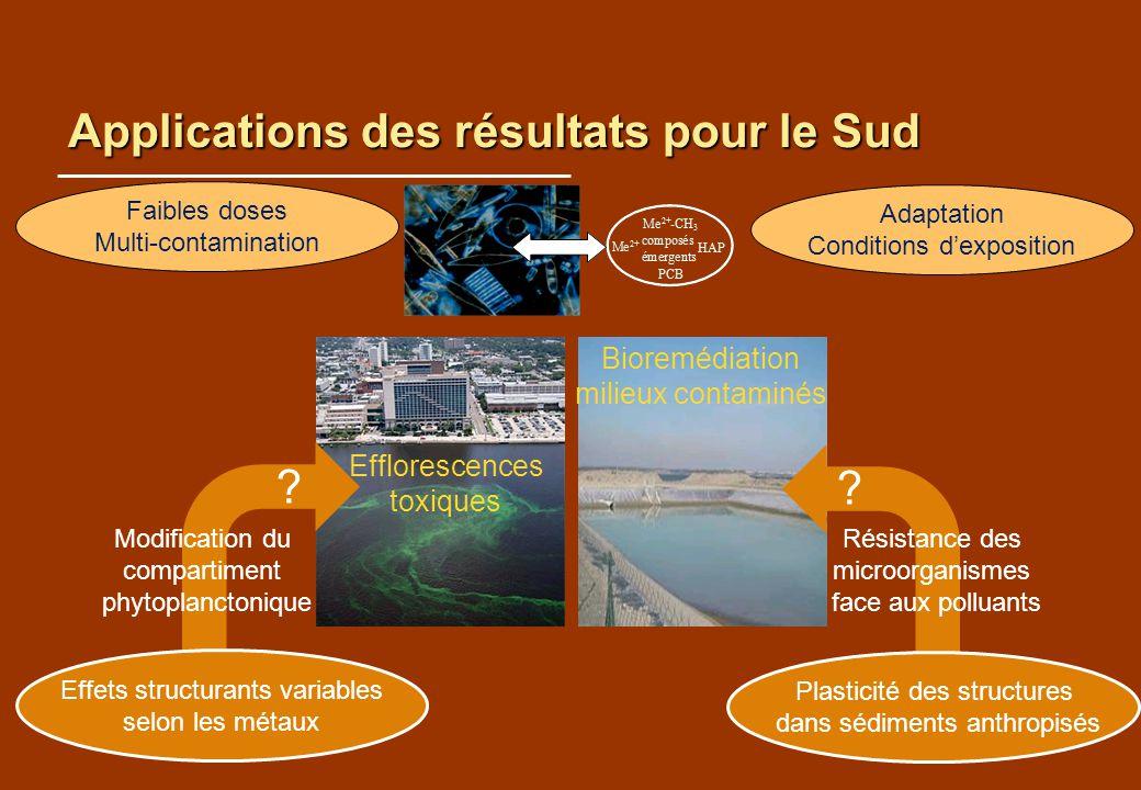 Applications des résultats pour le Sud Effets structurants variables selon les métaux Plasticité des structures dans sédiments anthropisés Faibles dos