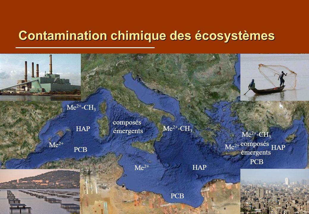 Contamination chimique des écosystèmes HAP Me 2+ PCB Me 2+ -CH 3 HAP Me 2+ PCB Me 2+ -CH 3 PCB HAP Me 2+ Me 2+ -CH 3 composés émergents composés émergents Urgence pour le sud Mise en place de programmes dédiés Croissance démographique Manque de connaissance Faibles moyens logistiques