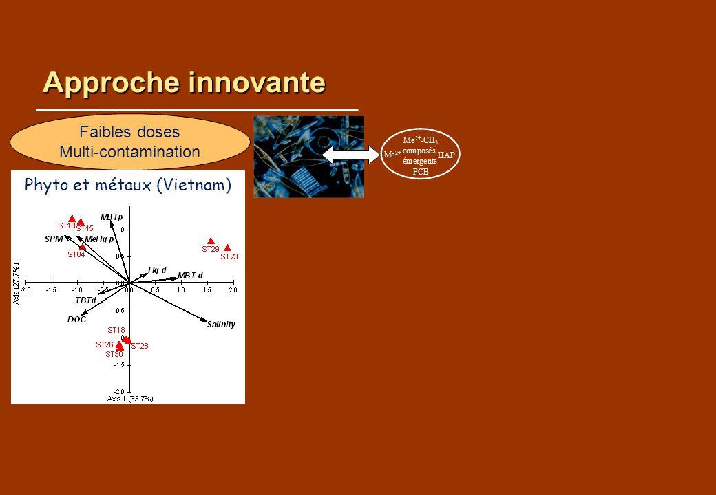 Approche innovante Effets structurants variables selon les métaux Rochelle-Newall et al 2011 Faibles doses Multi-contamination Phyto et métaux (Vietnam)