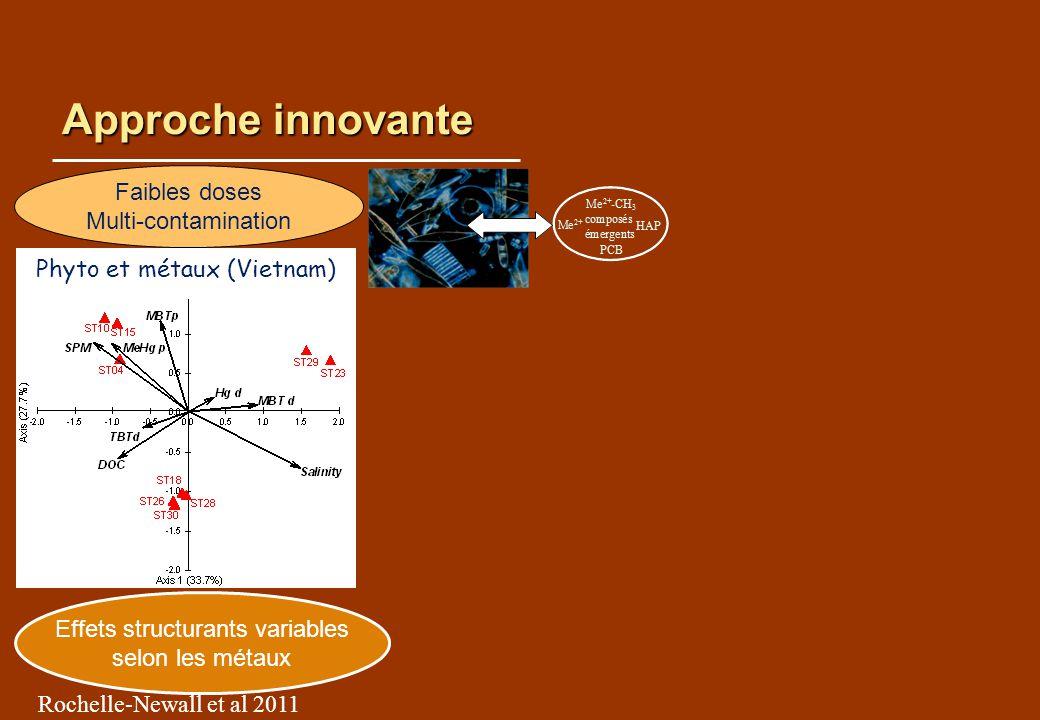 Approche innovante Effets structurants variables selon les métaux Rochelle-Newall et al 2011 Faibles doses Multi-contamination Adaptation Conditions dexposition Phyto et métaux (Vietnam)