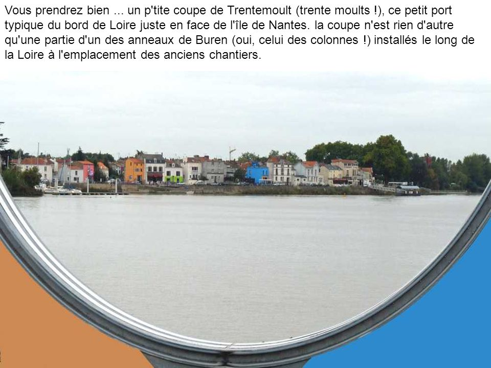 L île de Nantes vue du Maillé Brézé..