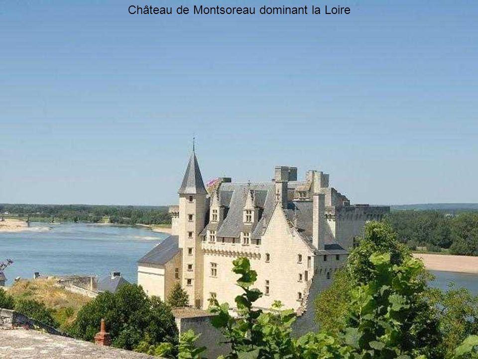 Candes-Saint-Martin vu de la confluence de la Loire et de la Vienne