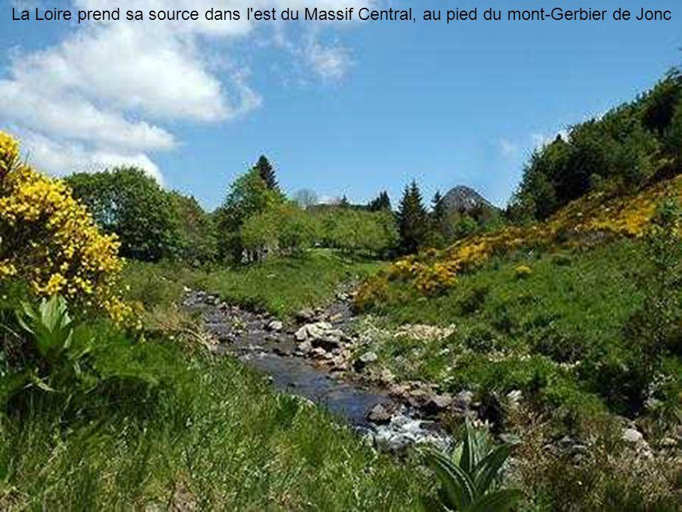 Sommet du mont Gerbier de Jonc (1551m)
