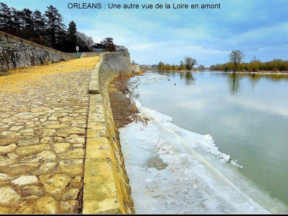 ORLEANS : La Loire monte.....monte.....monte