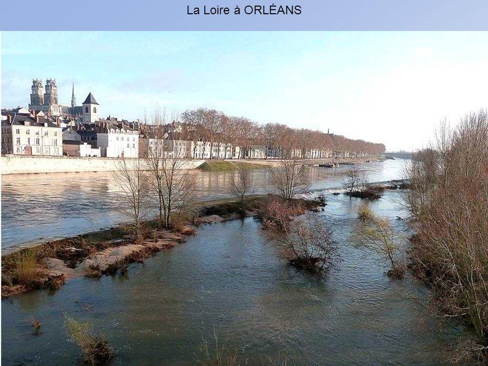 ORLEANS : Une autre vue de la Loire en amont
