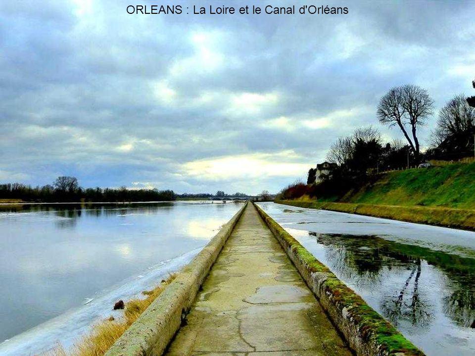 La Loire à ORLÉANS