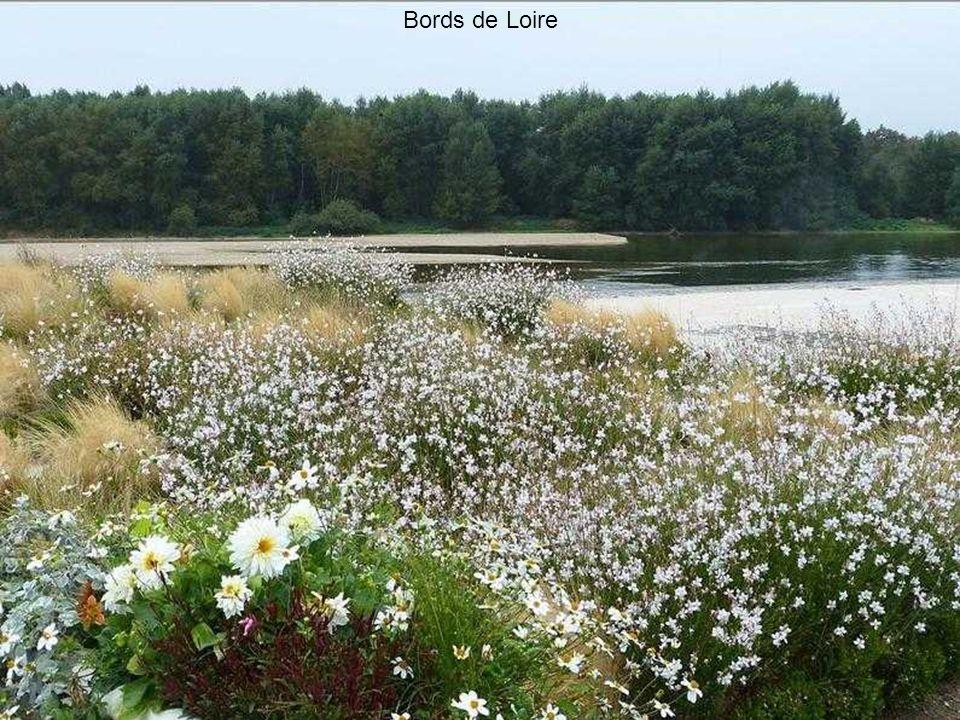 Un soir sur les bords de la Loire...