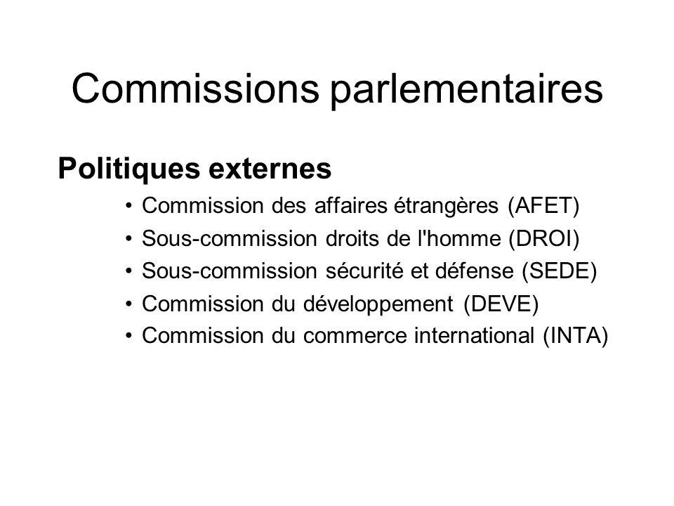 Commissions parlementaires Politiques externes Commission des affaires étrangères (AFET) Sous-commission droits de l homme (DROI) Sous-commission sécurité et défense (SEDE) Commission du développement (DEVE) Commission du commerce international (INTA)