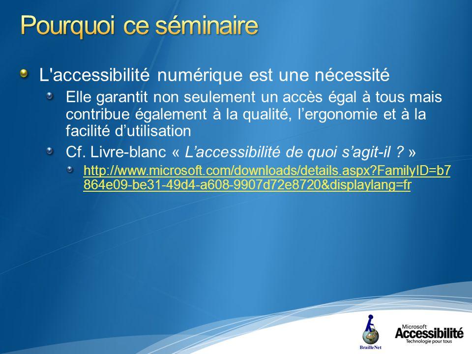 Evaluation Lire la barre d état pour la langue Consulter les propriétés du document ouvert ou les vérifier une fois le document fermé Utilisation dun logiciel de lecture d écran
