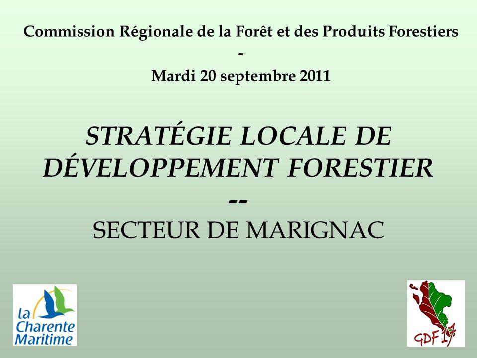 STRATÉGIE LOCALE DE DÉVELOPPEMENT FORESTIER -- SECTEUR DE MARIGNAC Commission Régionale de la Forêt et des Produits Forestiers - Mardi 20 septembre 2011