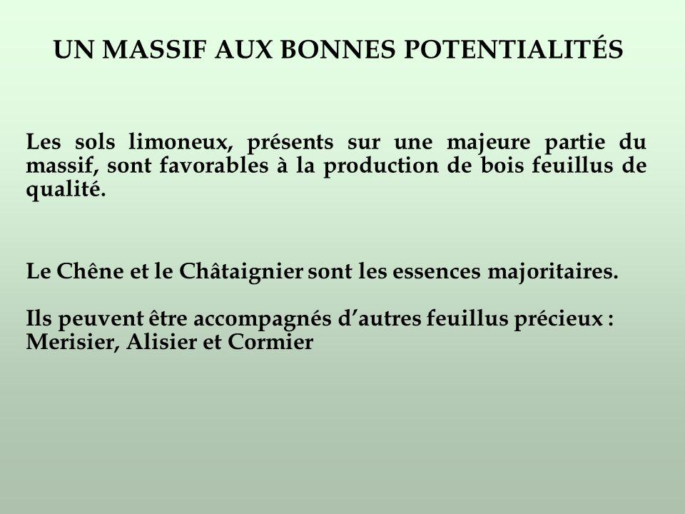 UN MASSIF AUX BONNES POTENTIALITÉS Les sols limoneux, présents sur une majeure partie du massif, sont favorables à la production de bois feuillus de qualité.