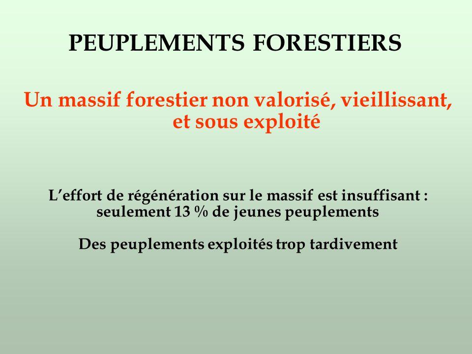 Un massif forestier non valorisé, vieillissant, et sous exploité Leffort de régénération sur le massif est insuffisant : seulement 13 % de jeunes peuplements Des peuplements exploités trop tardivement PEUPLEMENTS FORESTIERS