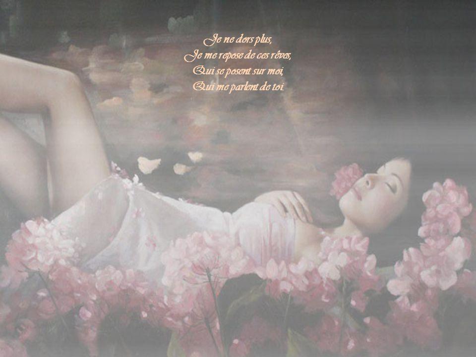 Je ne dors plus, Je me repose de ces rêves, Qui se posent sur moi, Qui me parlent de toi.