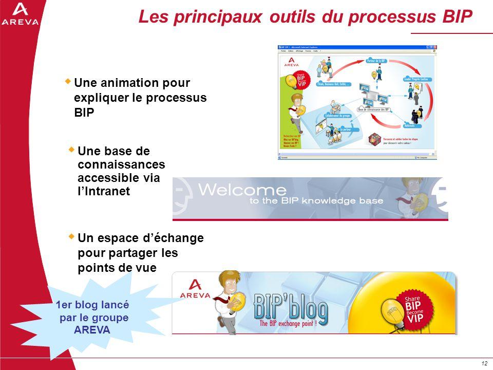 12 Les principaux outils du processus BIP Une base de connaissances accessible via lIntranet Une animation pour expliquer le processus BIP Un espace d