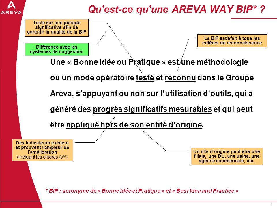 44 Quest-ce quune AREVA WAY BIP* ? Une « Bonne Idée ou Pratique » est une méthodologie ou un mode opératoire testé et reconnu dans le Groupe Areva, sa