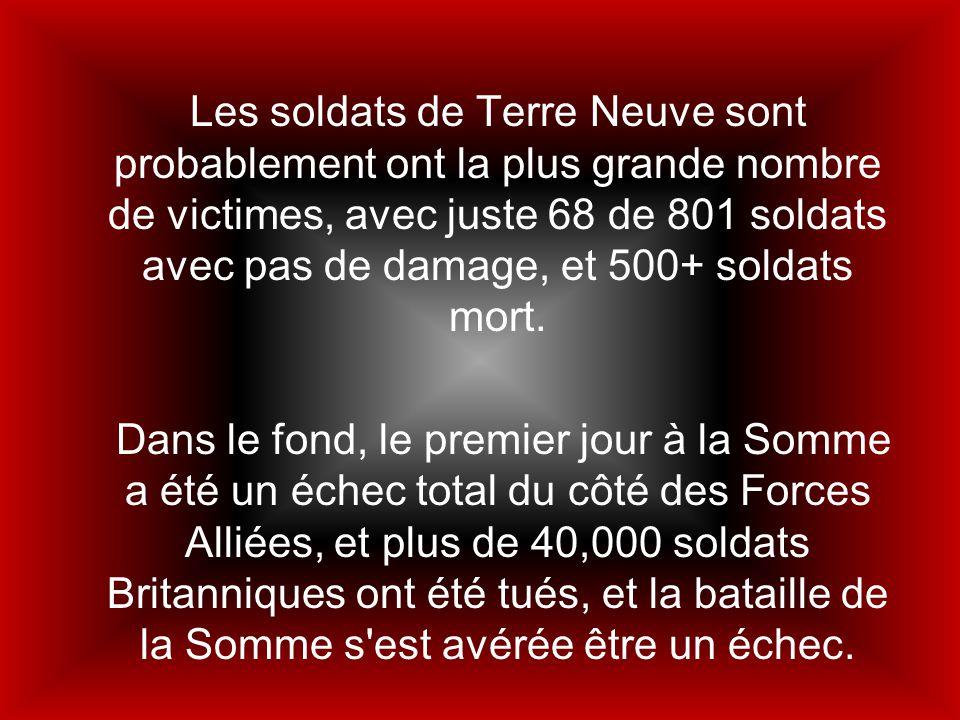 Les soldats de Terre Neuve sont probablement ont la plus grande nombre de victimes, avec juste 68 de 801 soldats avec pas de damage, et 500+ soldats m