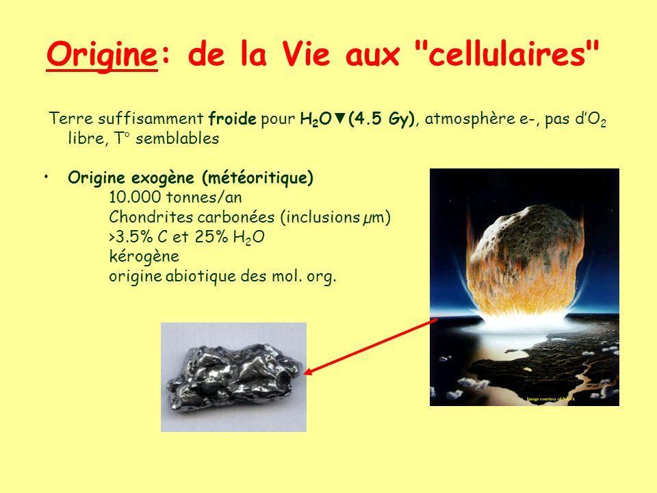 Origine: de la Vie aux cellulaires Terre suffisamment froide pour H 2 O (4.5 Gy), atmosphère e-, pas dO 2 libre, T° semblables Origine exogène (météoritique) 10.000 tonnes/an Chondrites carbonées (inclusions µm) >3.5% C et 25% H 2 O kérogène origine abiotique des mol.