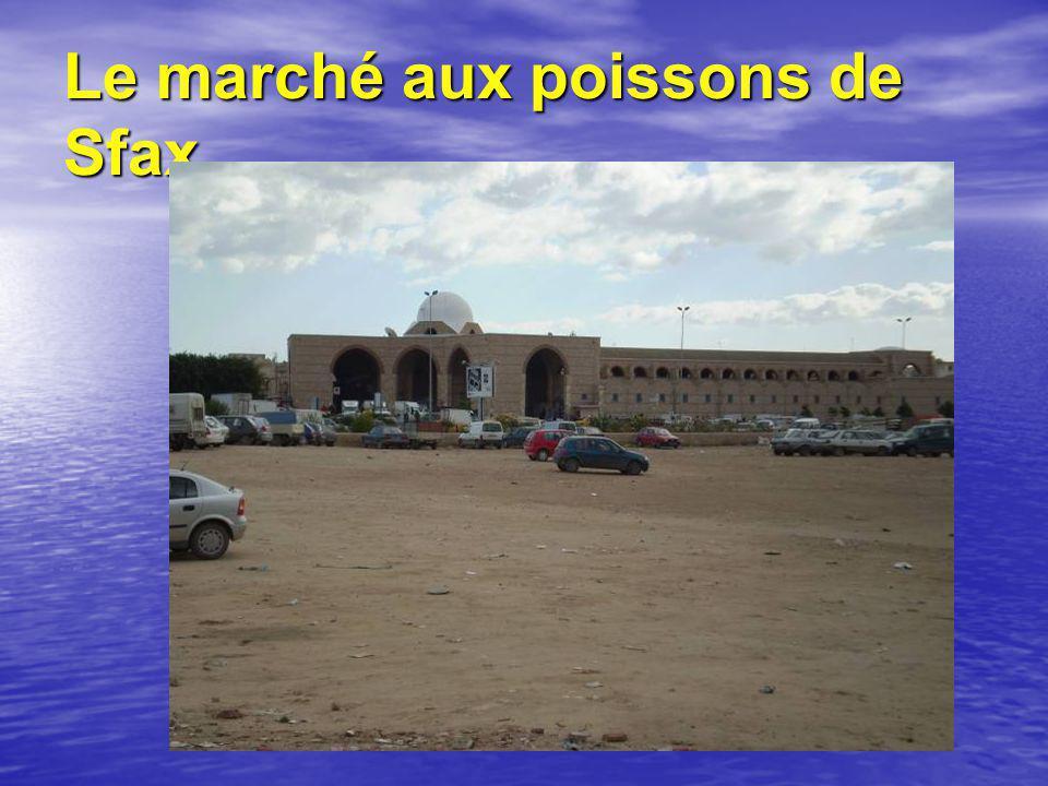 Le marché aux poissons de Sfax