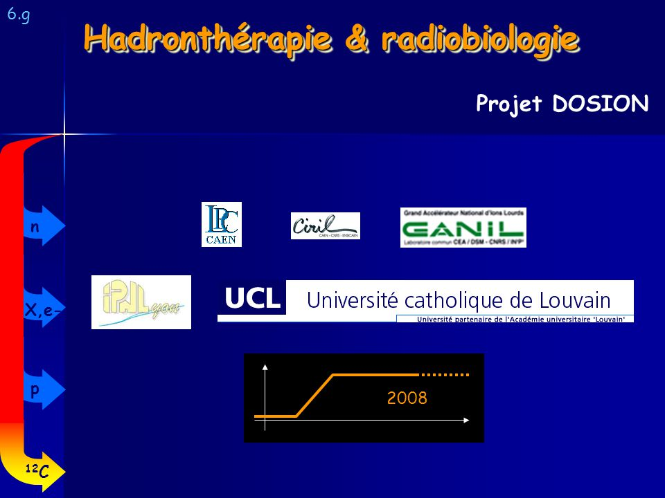 6.g Projet DOSION Hadronthérapie & radiobiologie 2008 12 C p X,e- n