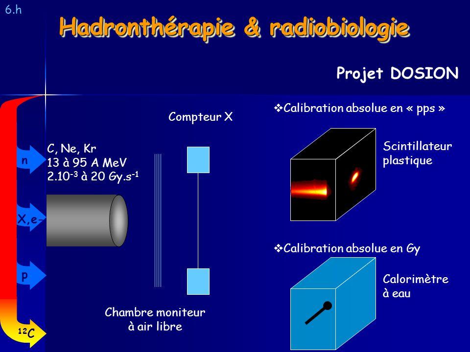 6.h Projet DOSION Hadronthérapie & radiobiologie Chambre moniteur à air libre Compteur X Calibration absolue en « pps » Calibration absolue en Gy Calo
