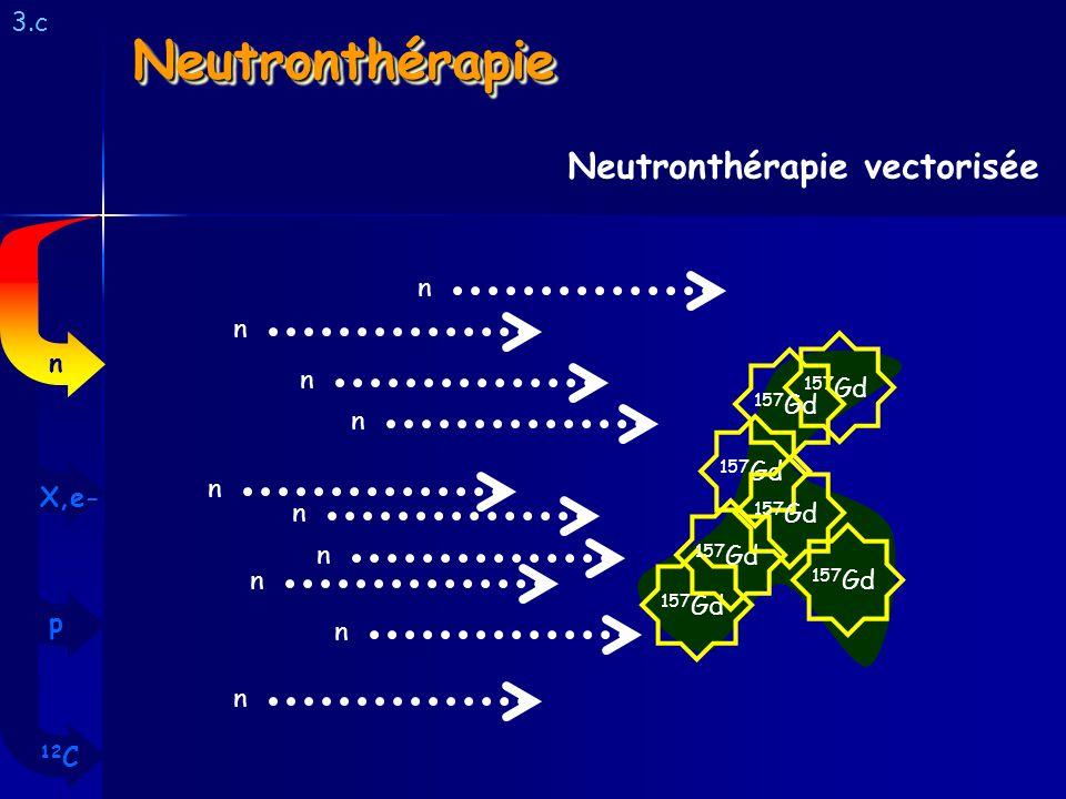 NeutronthérapieNeutronthérapie 3.c Neutronthérapie vectorisée 157 Gd n n n n n n n n n n 12 C p X,e- n