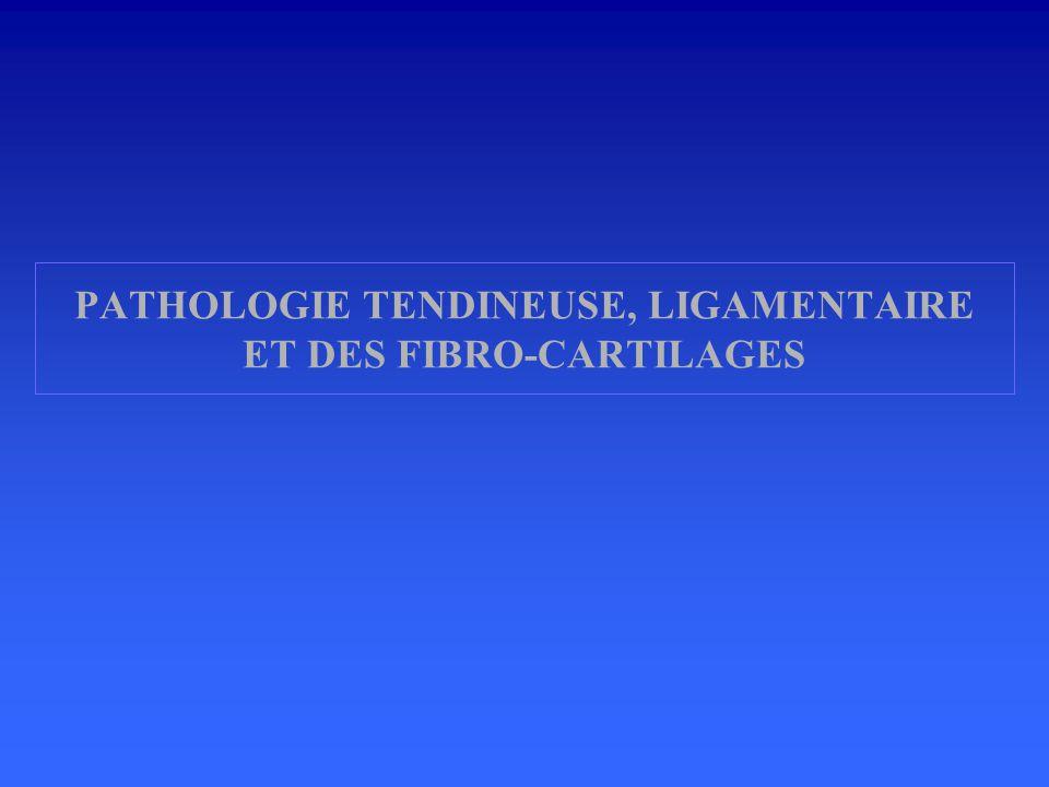 PATHOLOGIE TENDINEUSE, LIGAMENTAIRE ET DES FIBRO-CARTILAGES