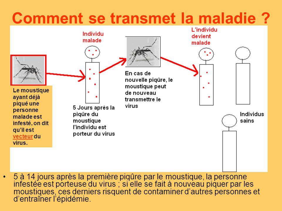 Comment guérir du chikungunya .