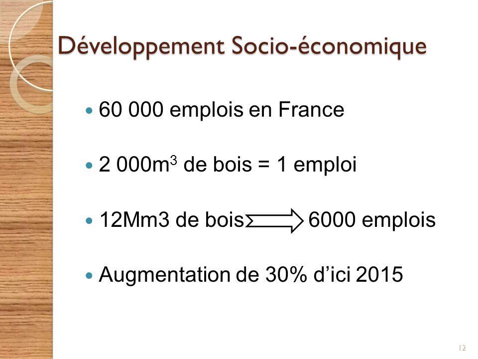 Développement Socio-économique 60 000 emplois en France 2 000m 3 de bois = 1 emploi 12Mm3 de bois 6000 emplois Augmentation de 30% dici 2015 12