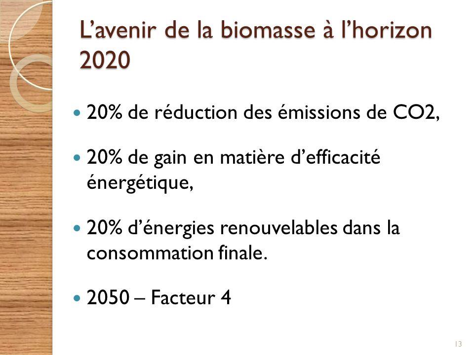Lavenir de la biomasse à lhorizon 2020 20% de réduction des émissions de CO2, 20% de gain en matière defficacité énergétique, 20% dénergies renouvelab