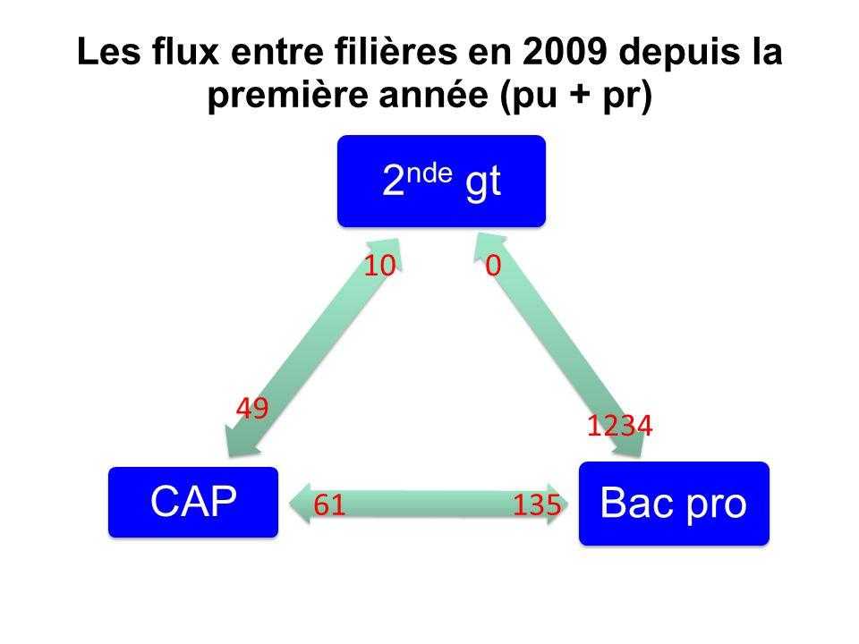 Origine des élèves de 1 ère année de CAP (public) 2005