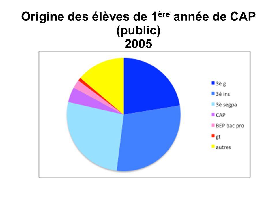 Origine des élèves de 1 ère année de CAP (public) 2009