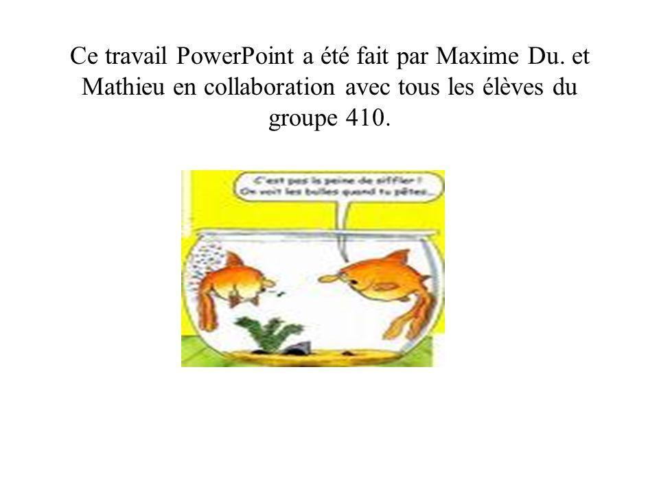 Ce travail PowerPoint a été fait par Maxime Du.
