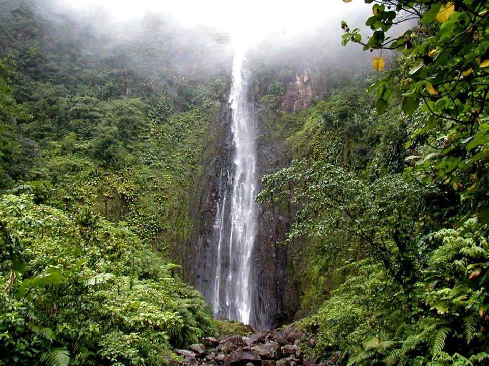 L'île Maurice couvre une superficie de 1 866 km2. Elle mesure dans ses plus grandes dimensions 65 km de longueur et 45 km de largeur. Le point le plus