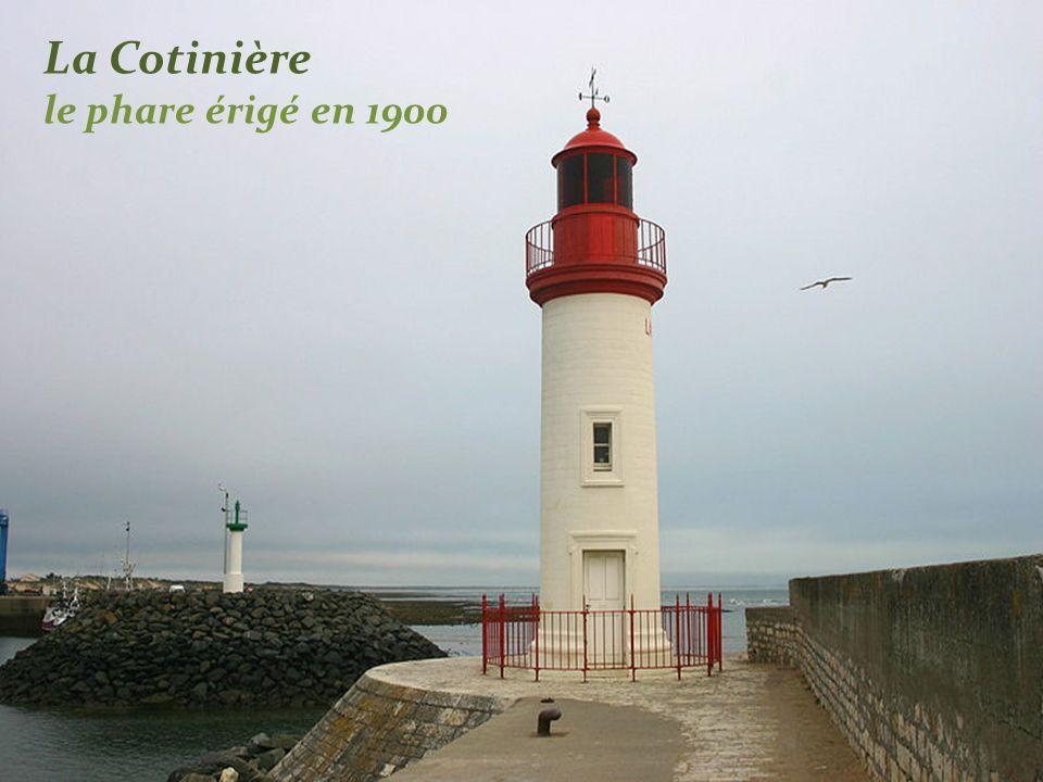 La Cotinière le port