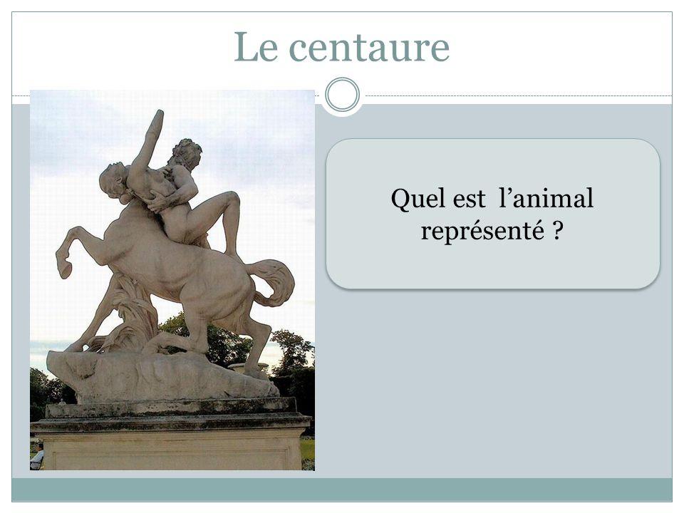 Le centaure Quel est lanimal représenté ? Quel est lanimal représenté ?