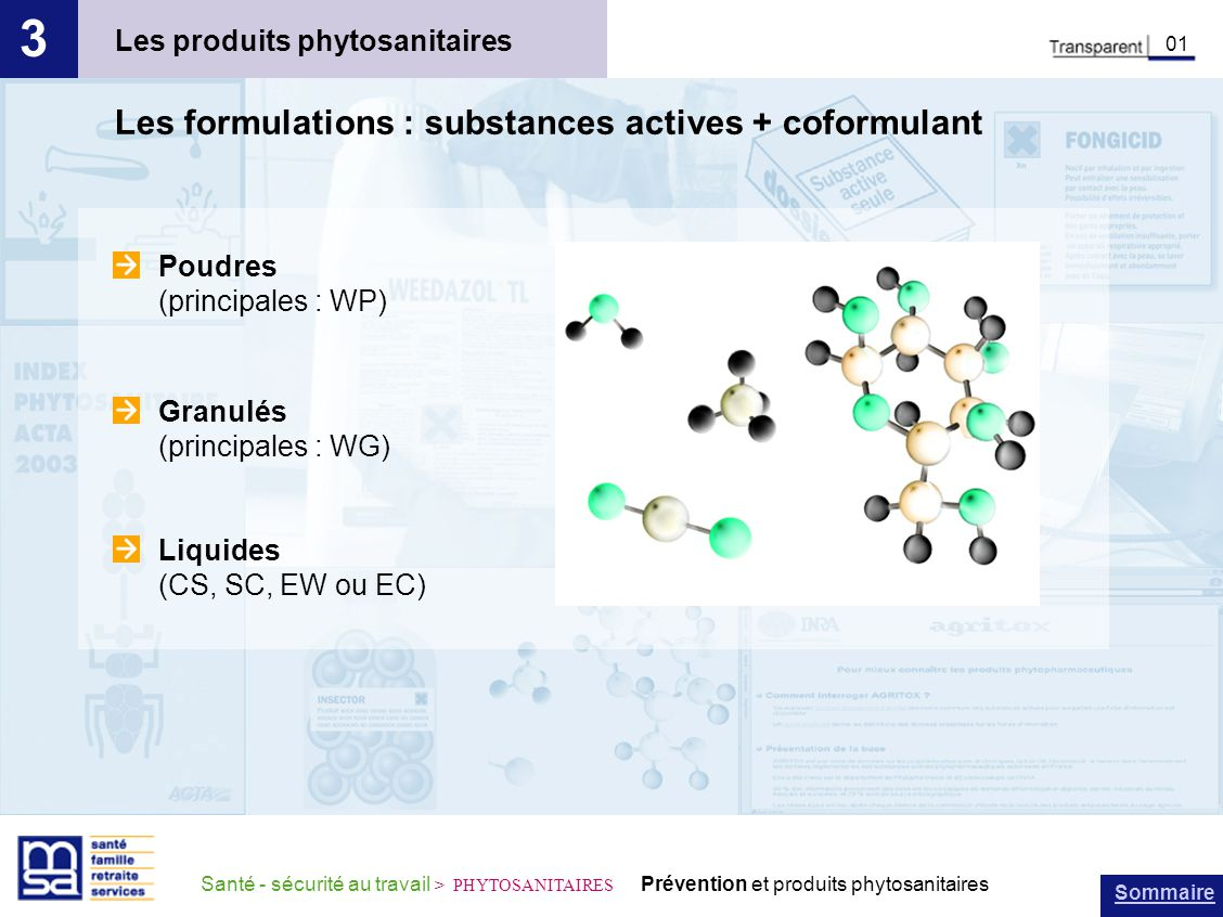 Sommaire Santé - sécurité au travail > PHYTOSANITAIRES Prévention et produits phytosanitaires Les produits phytosanitaires 3 01 Les formulations : sub