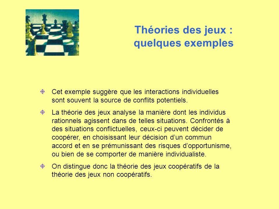 Cet exemple suggère que les interactions individuelles sont souvent la source de conflits potentiels. La théorie des jeux analyse la manière dont les