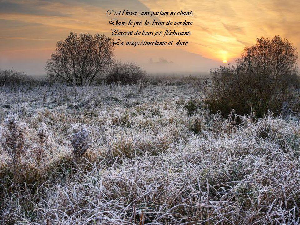 Lhiver Anna de Noailles ( Le cœur innombrable) Par Nanou et Stan
