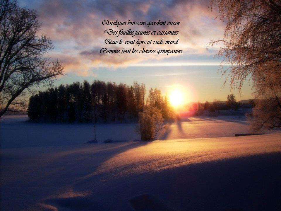 Cest lhiver sans parfum ni chants, Dans le pré, les brins de verdure Percent de leurs jets fléchissants La neige étincelante et dure
