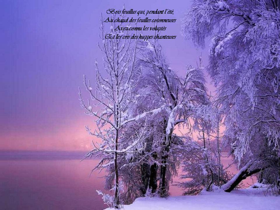 Et les arbres silencieux Que toute cette neige isole Ont cessé de faire entre eux Leurs confidences bénévoles