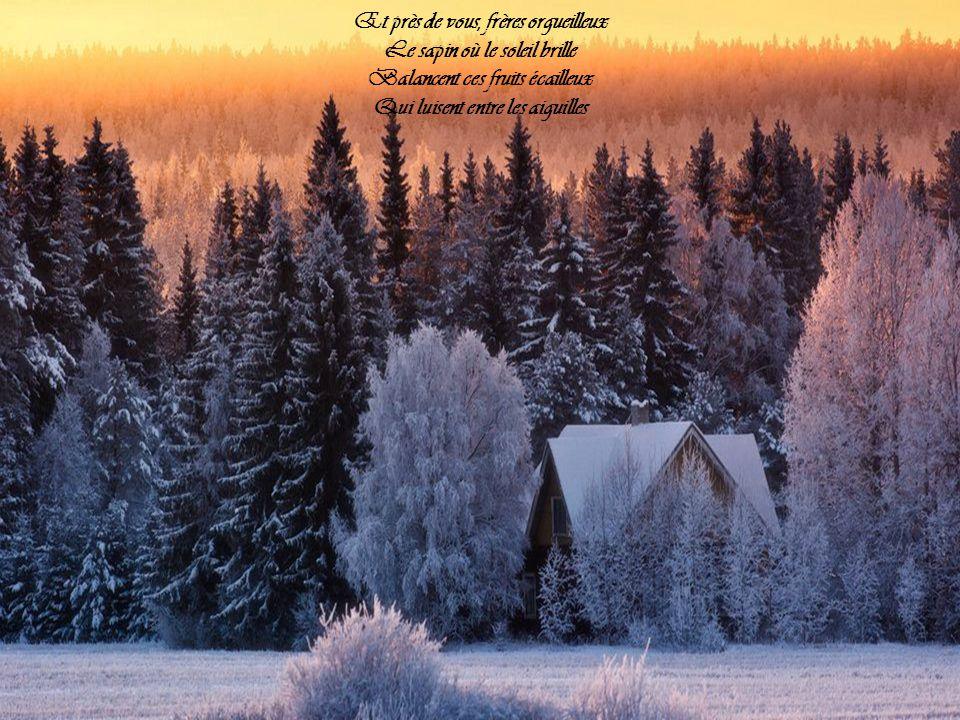 Vous êtes las, vous êtes nus, Plus rien dans lair ne vous protège, Et vos cœurs tendres ou chenus Se désespèrent sur la neige