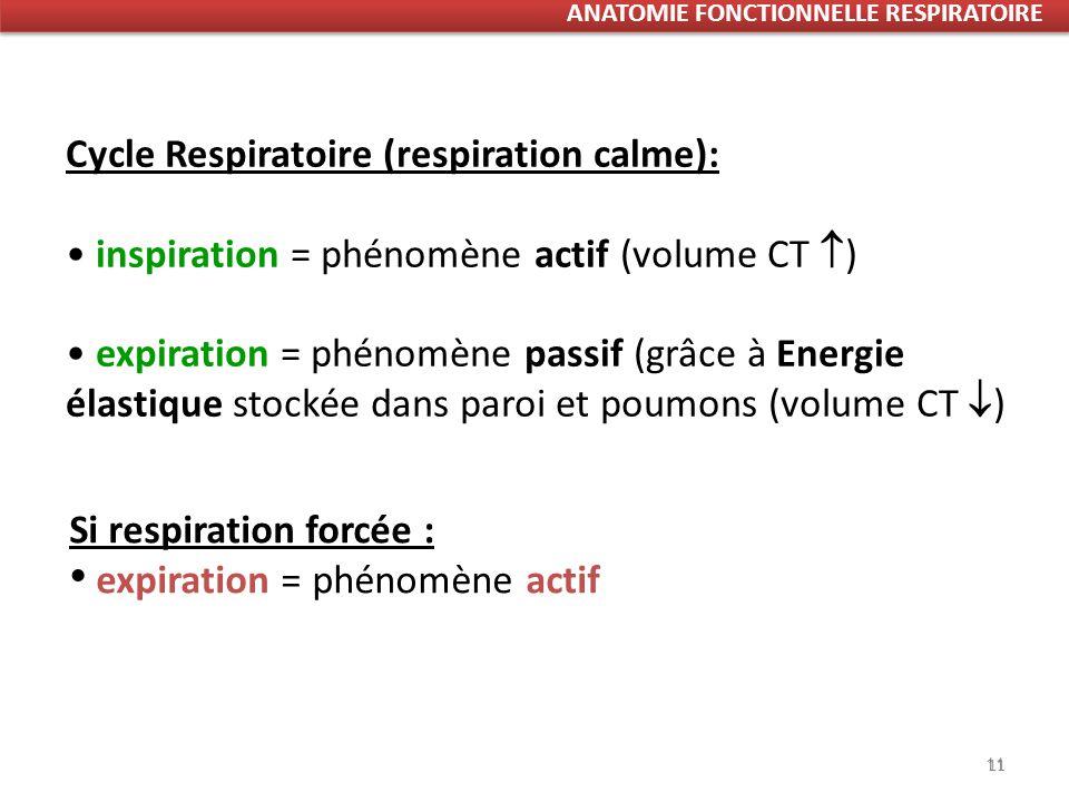 11 Cycle Respiratoire (respiration calme): inspiration = phénomène actif (volume CT ) expiration = phénomène passif (grâce à Energie élastique stockée dans paroi et poumons (volume CT ) Si respiration forcée : expiration = phénomène actif 11 ANATOMIE FONCTIONNELLE RESPIRATOIRE