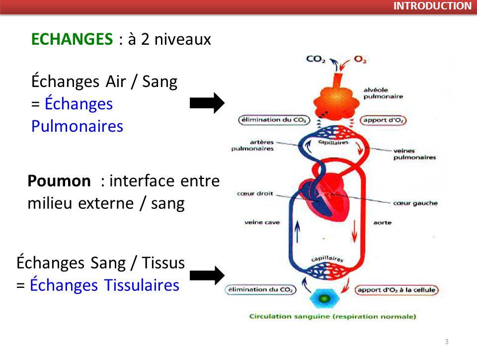 3 ECHANGES : à 2 niveaux Échanges Air / Sang = Échanges Pulmonaires Échanges Sang / Tissus = Échanges Tissulaires Poumon : interface entre milieu externe / sang INTRODUCTION