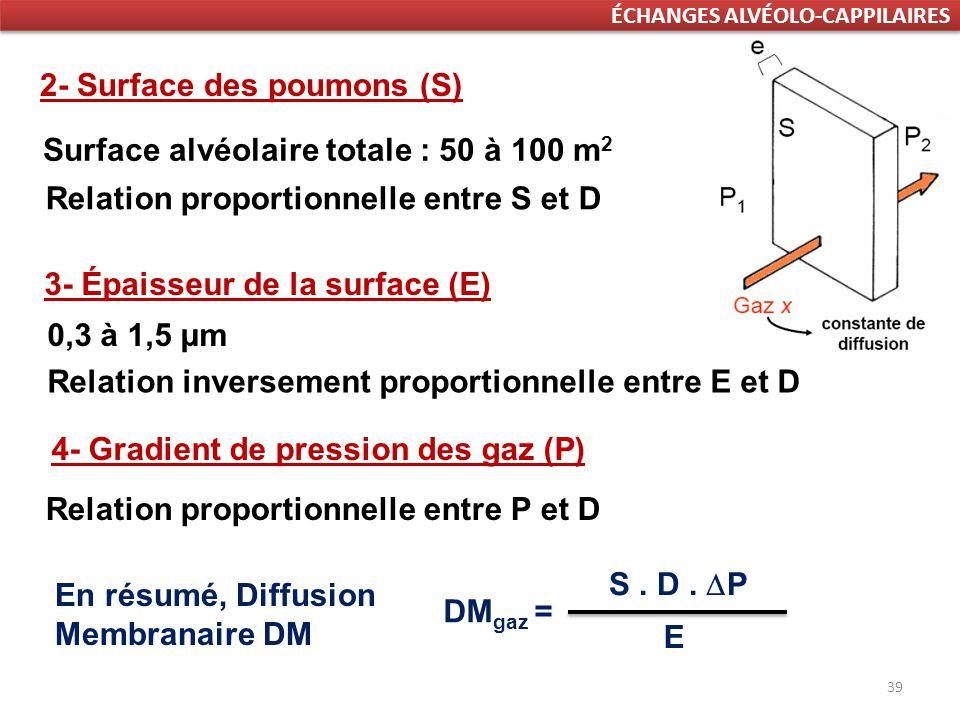 39 ÉCHANGES ALVÉOLO-CAPPILAIRES 2- Surface des poumons (S) Relation proportionnelle entre S et D Surface alvéolaire totale : 50 à 100 m 2 3- Épaisseur de la surface (E) Relation inversement proportionnelle entre E et D 0,3 à 1,5 μm 4- Gradient de pression des gaz (P) S.